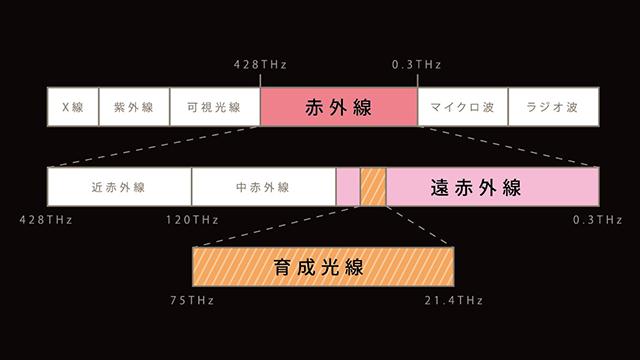 遠赤外線(育成光線/テラヘルツ波)の図